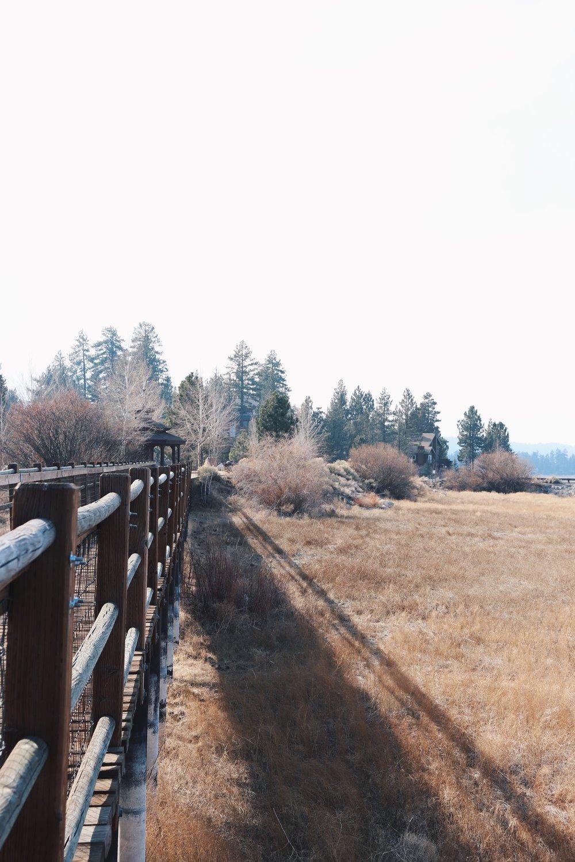 Stanfield Marsh Boardwalk & Wildlife Preserve