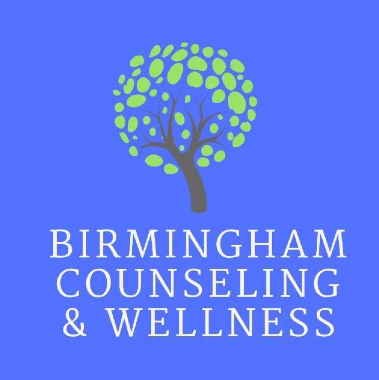 Birmingham Counseling and Wellness
