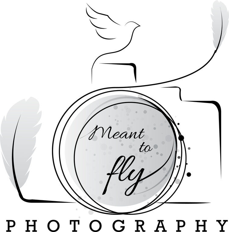 Meant to Fly Photography
