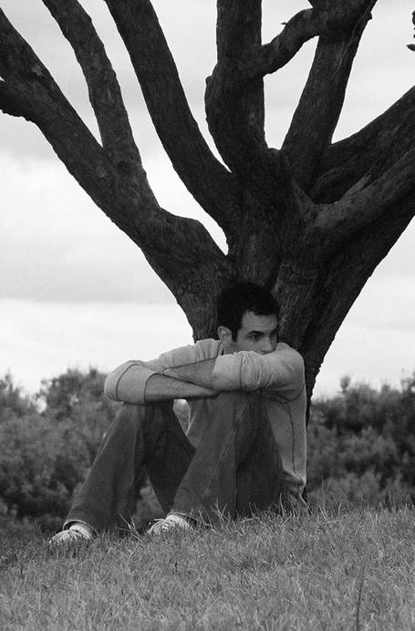 Sean-Fournier-tree.png
