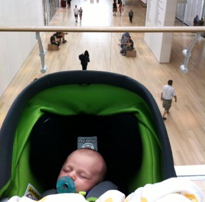 Teddy, 3 weeks, Art Institute