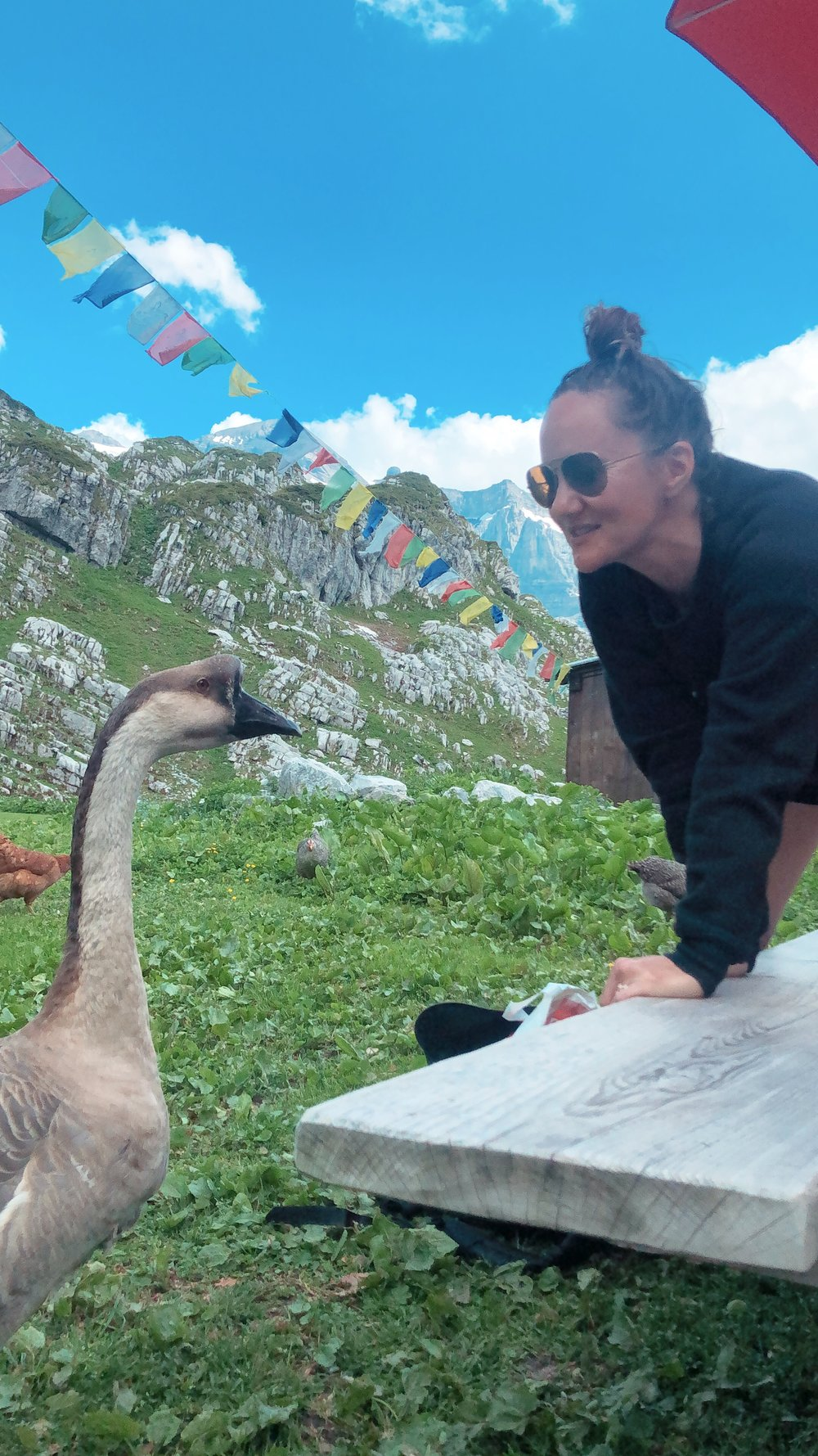 On an amazing hike in the French alps making a new friend