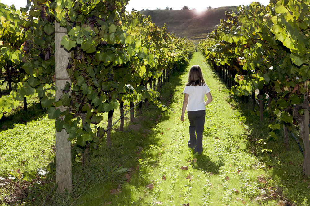 girl walking in vineyard.jpg