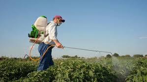 Link between early developmental exposure to ambient pesticides and autism spectrum disorder