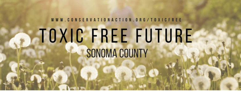 toxic free future.jpg