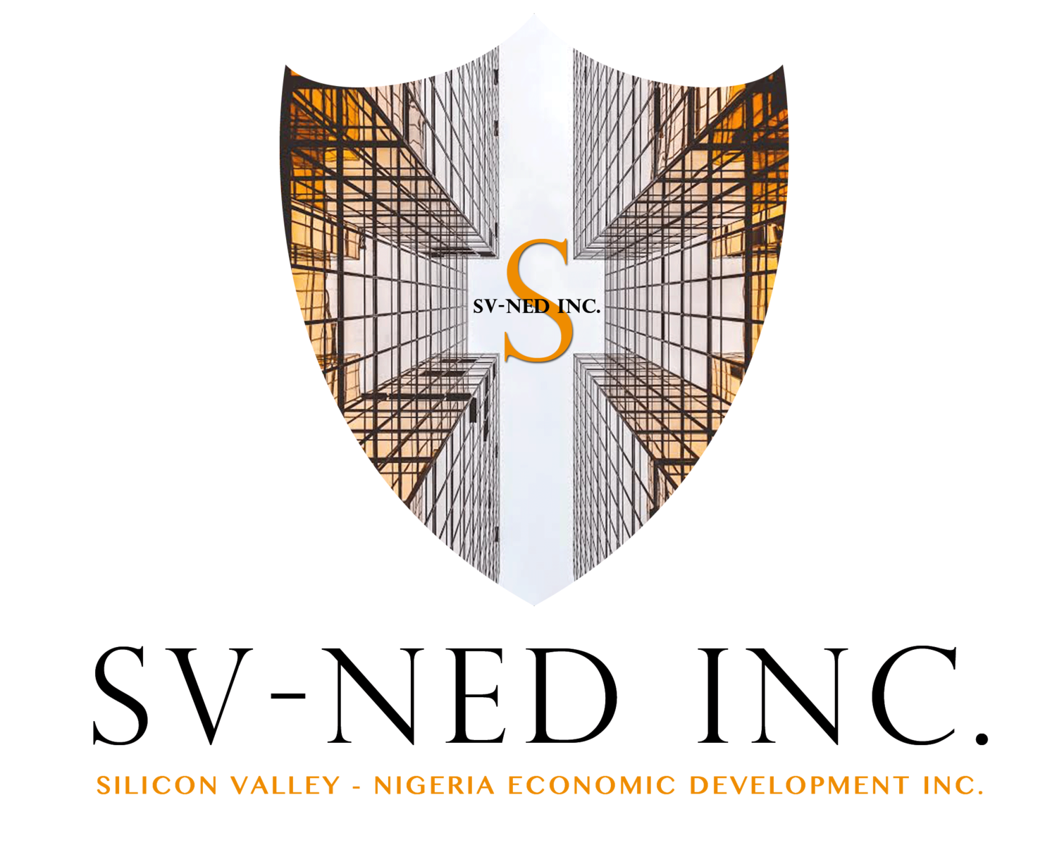 Image result for Silicon Valley-Nigeria Economic Development,