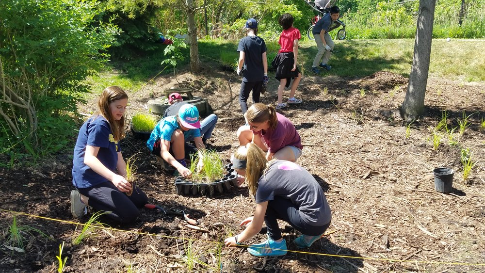 East Rockford Middle School Students Planting Bioswale