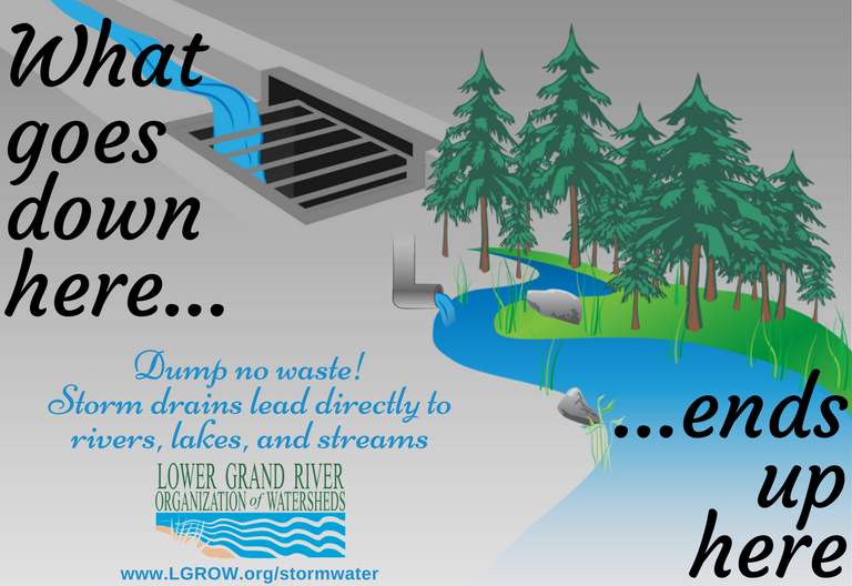 Dump no waste! If you observe someone dumping something down a storm drain, please report it through your local municipality. Anything dumped down a storm drain will pollute our local waterways, and eventually end up in the source of our drinking water. Spills of materials and substances down the storm sewer system should also be reported as the spill will have a direct impact on the watershed.