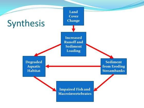 imcsynthesis.jpg