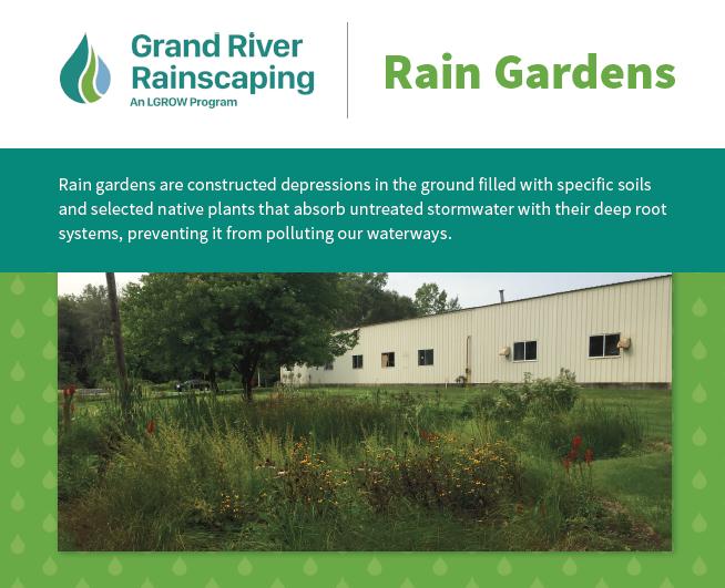 RainGardents_RainscapingCard.PNG