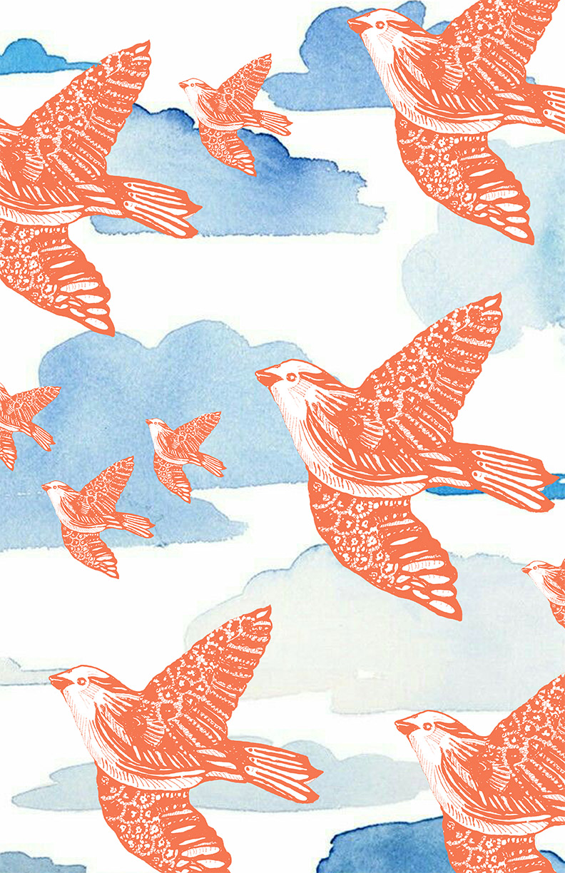 Salmon bird pattern  on clouds web.jpg