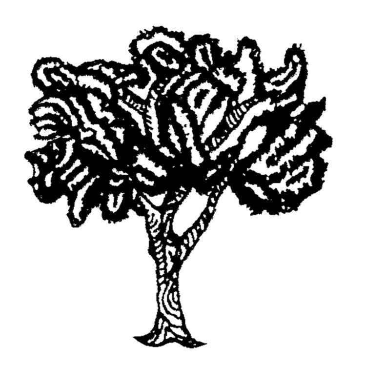 Tree+individual+web.jpg