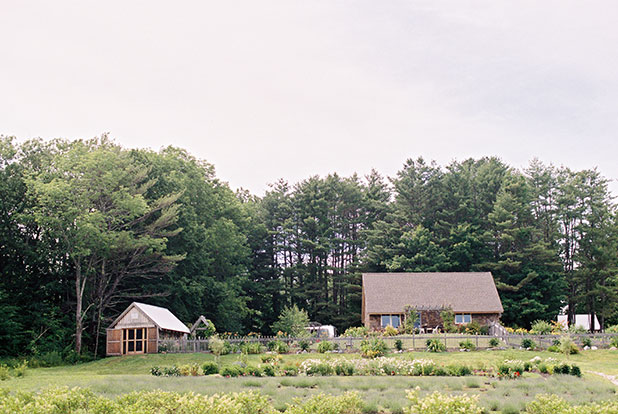 This is a photo of Marianmade Farm, a lavender farm in Wiscasset, Maine.