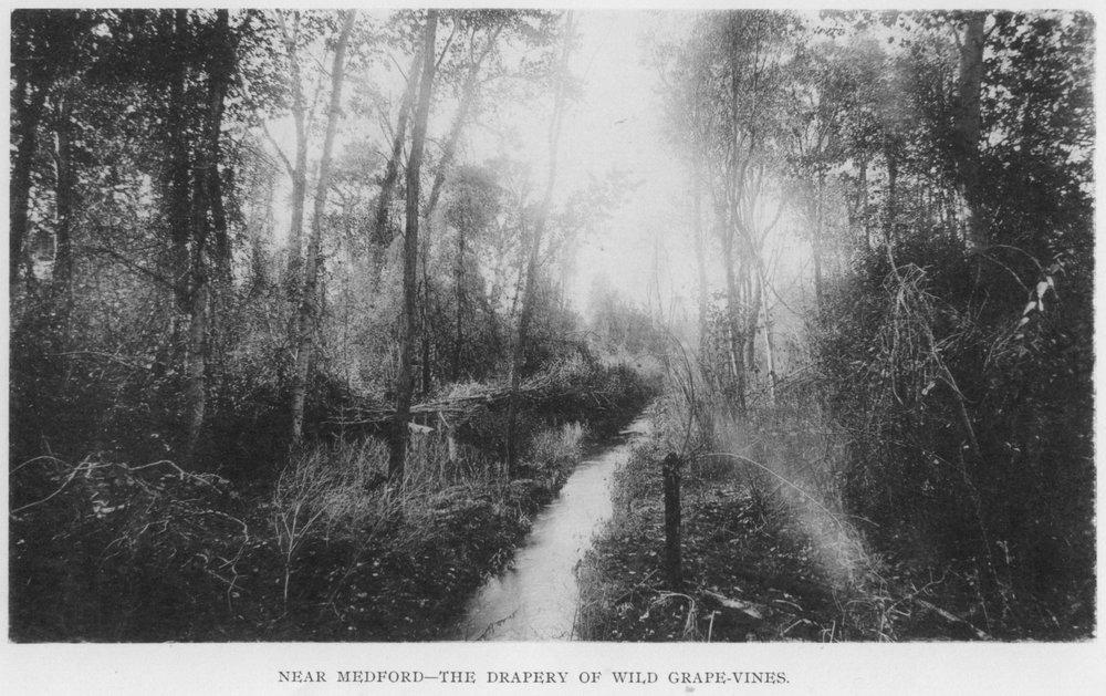 1889 Medford truwe.jpg