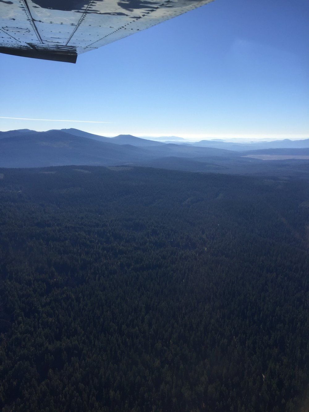 The view from above the Rogue River-Siskiyou National Forest near where the Pacific Connector Pipeline would cross the Pacific Crest Trail The proposed fracked gas pipeline would clear-cut a 95-foot buffer along the entire pipeline route.