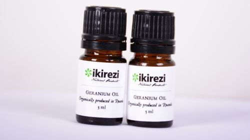Bottled rose geranium oil for sale