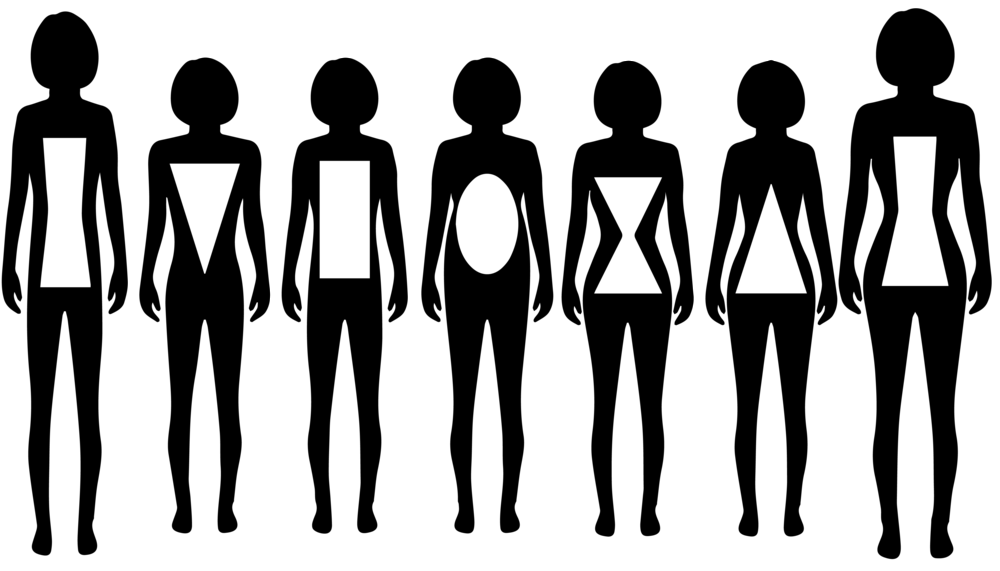 body types-02.png