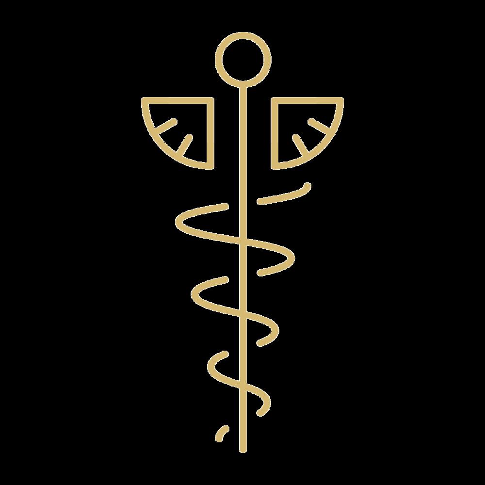 medical symbol.png