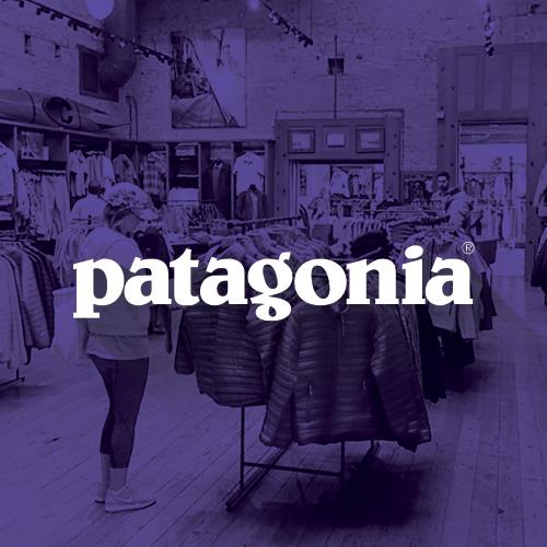 patagonia brand retail case study