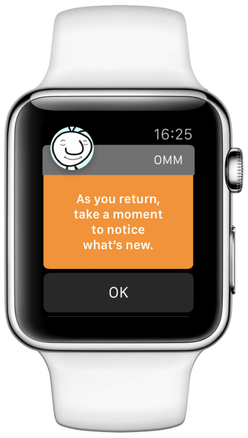 apple watch meditation notification