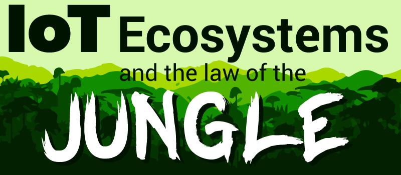 jungle-header.png