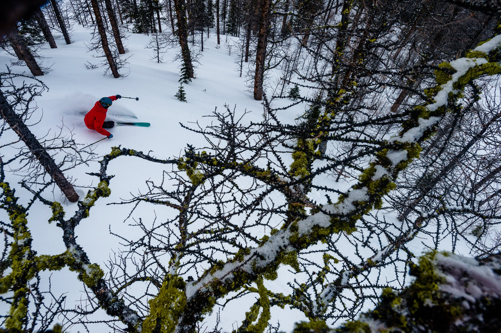 Ski_Snowboard_Lake_Louise_2016_Reuben_Krabbe_21_Horizontal.jpg