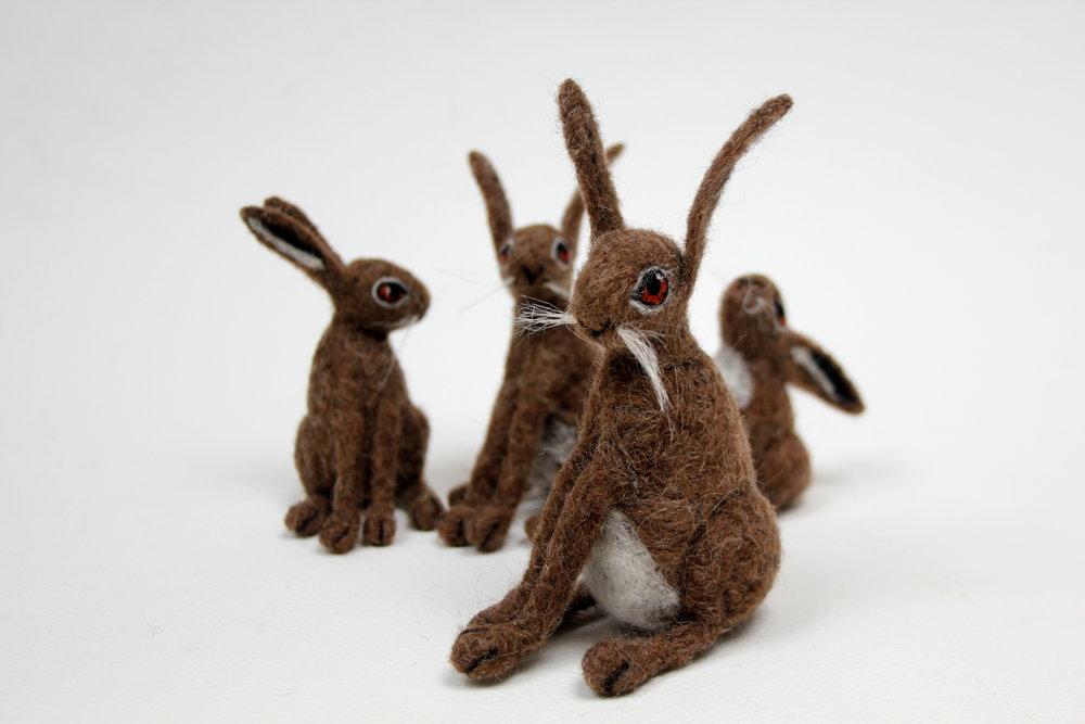 hare family portrait.JPG