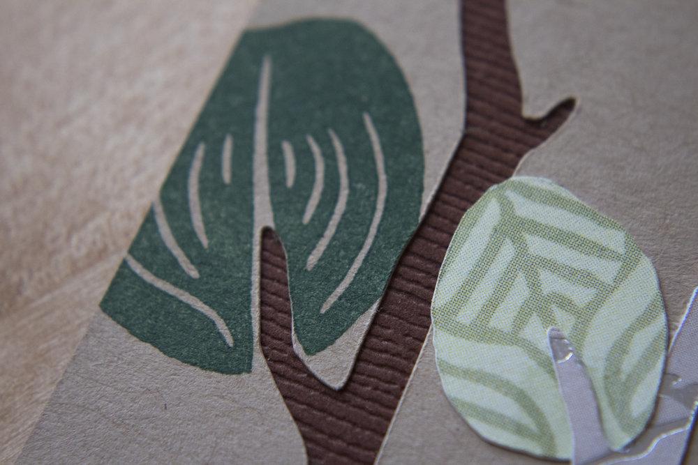 Eucalyptus- 2 Leaves Close Up.jpg