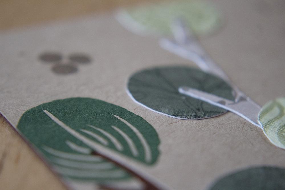 Eucalyptus- Close Up 2.jpg