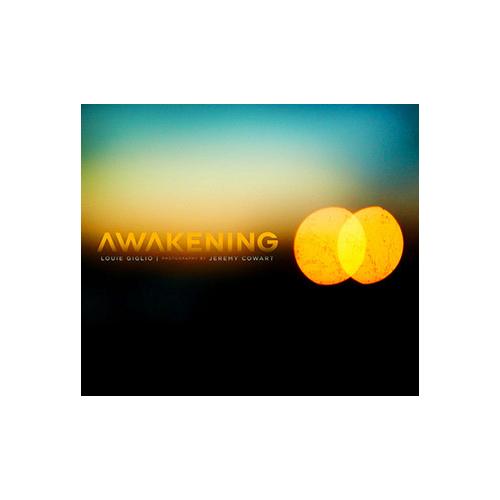book_awakening.jpg