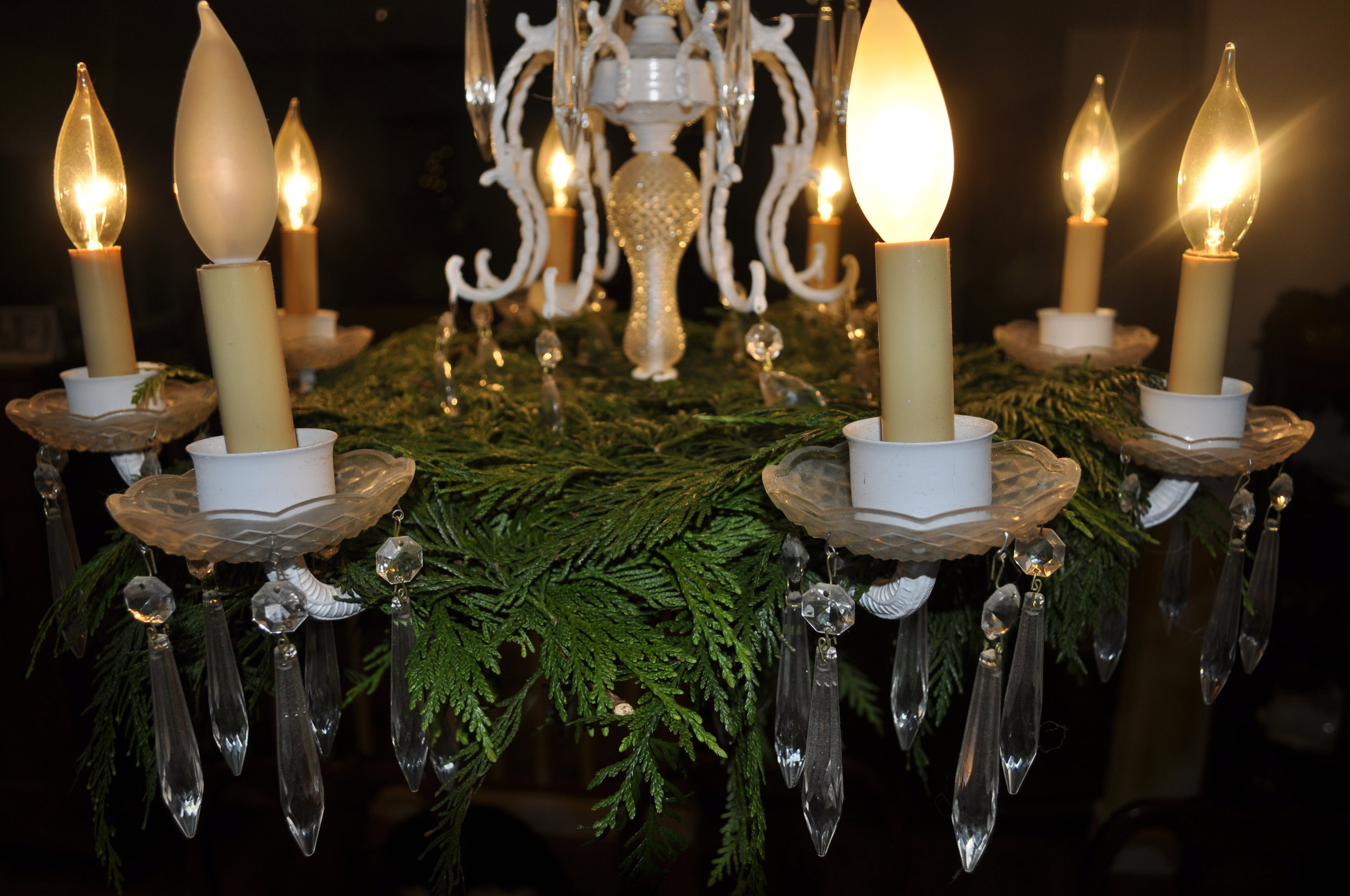 Northwest Pearls: Cedar and Chandelier