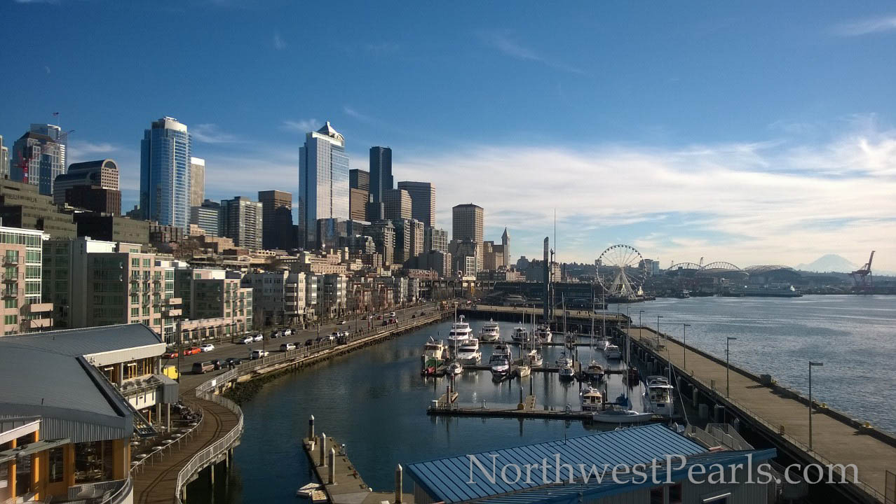View of Seattle skyscrapers from Bell Street Pier