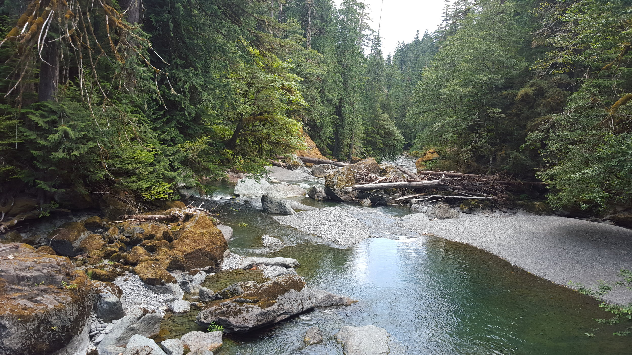 Northwest Pearls: North Fork Skokomish River