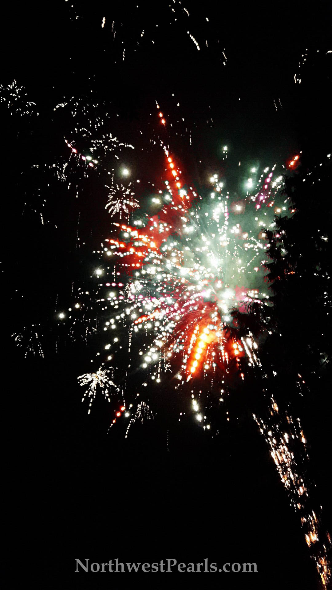 Northwest Pearls: Fireworks