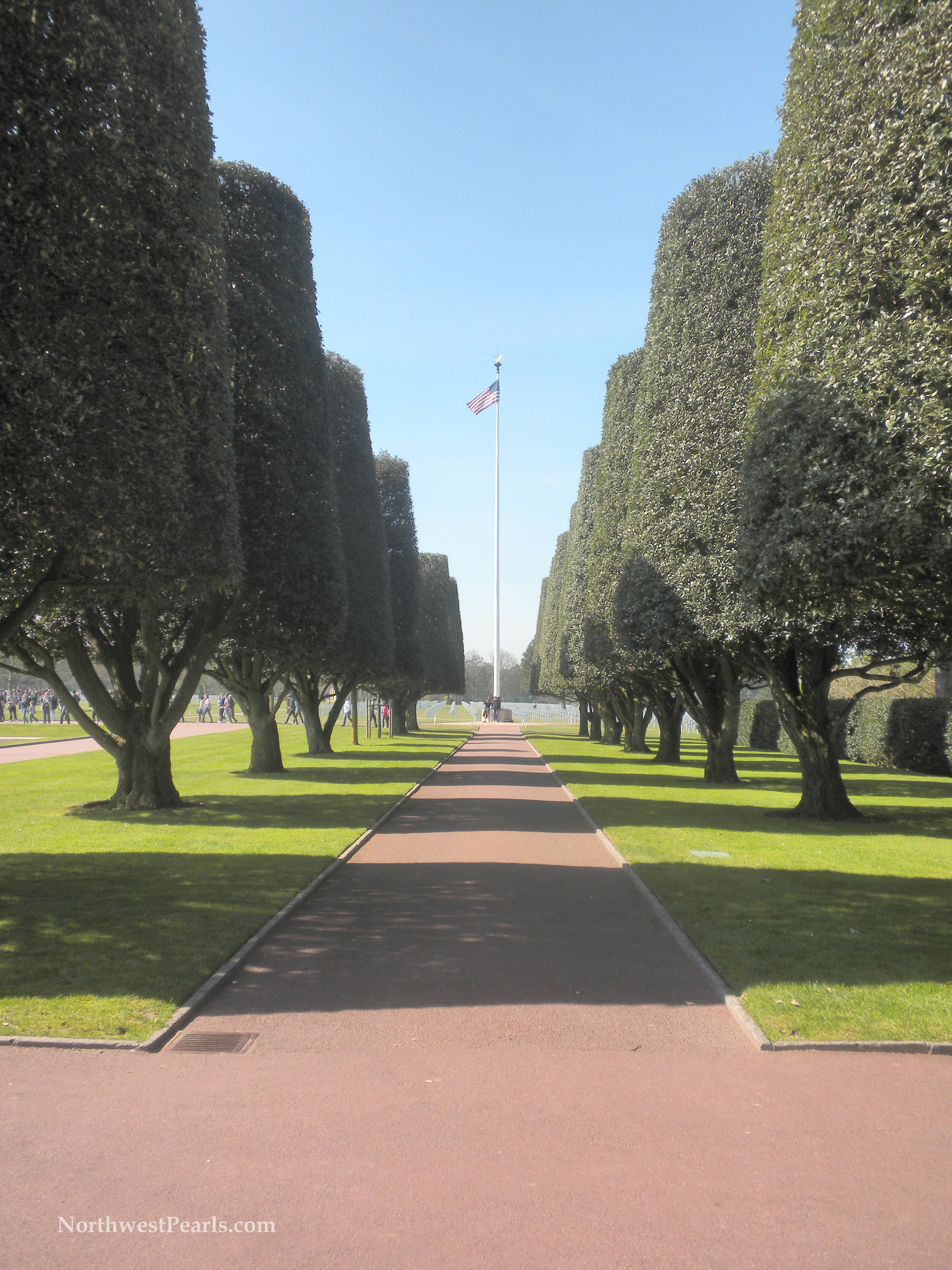 Northwest Pearls: Veterans Day
