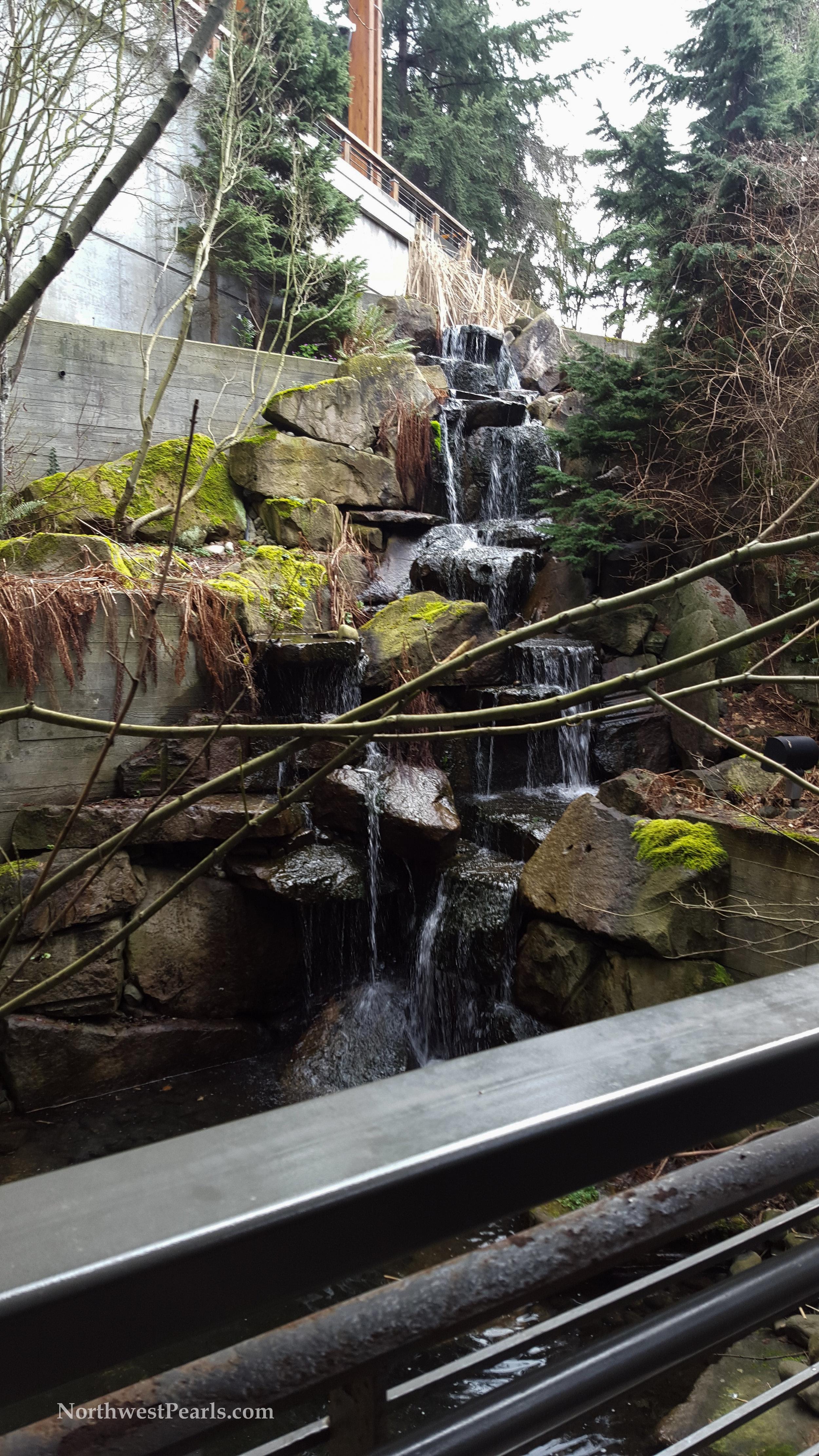 Northwest Pearls: REI Seattle