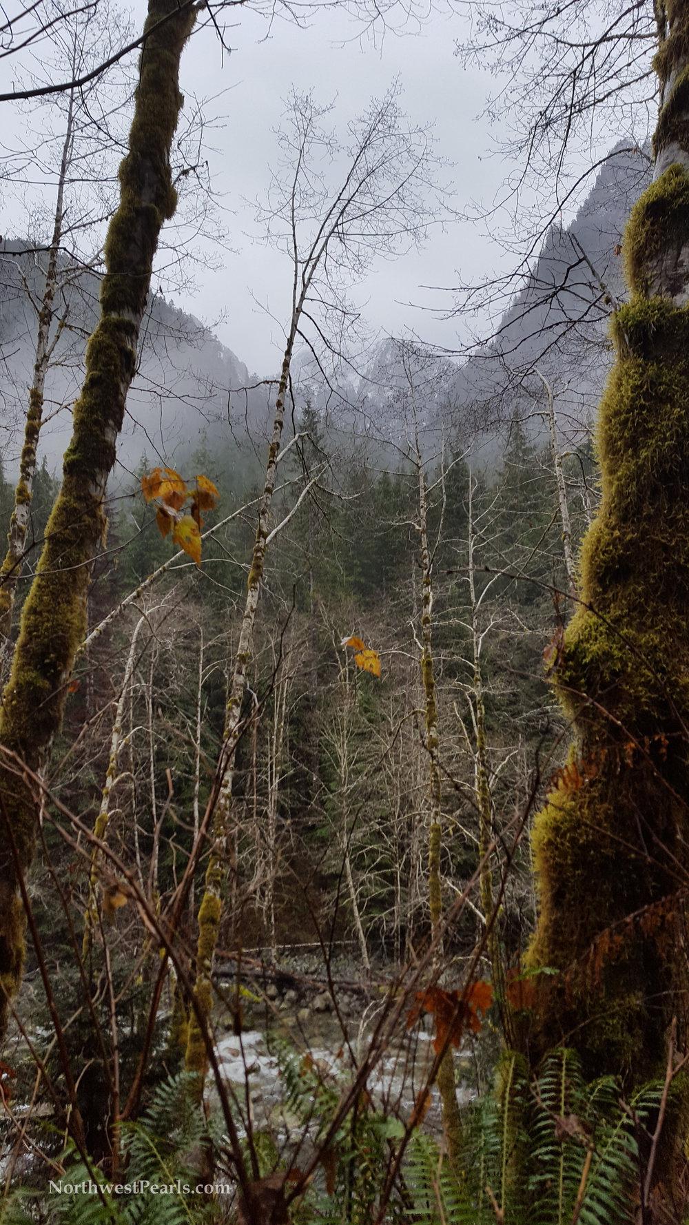 otter-falls-blog-6.jpg