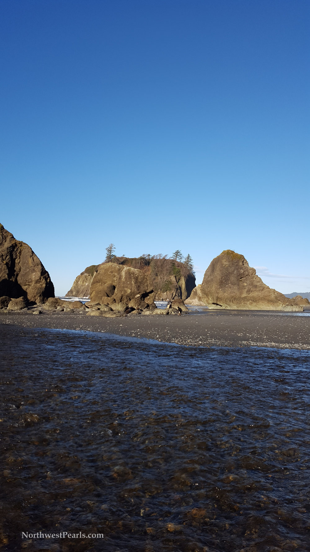 kalaloch-and-ruby-beach-9.jpg
