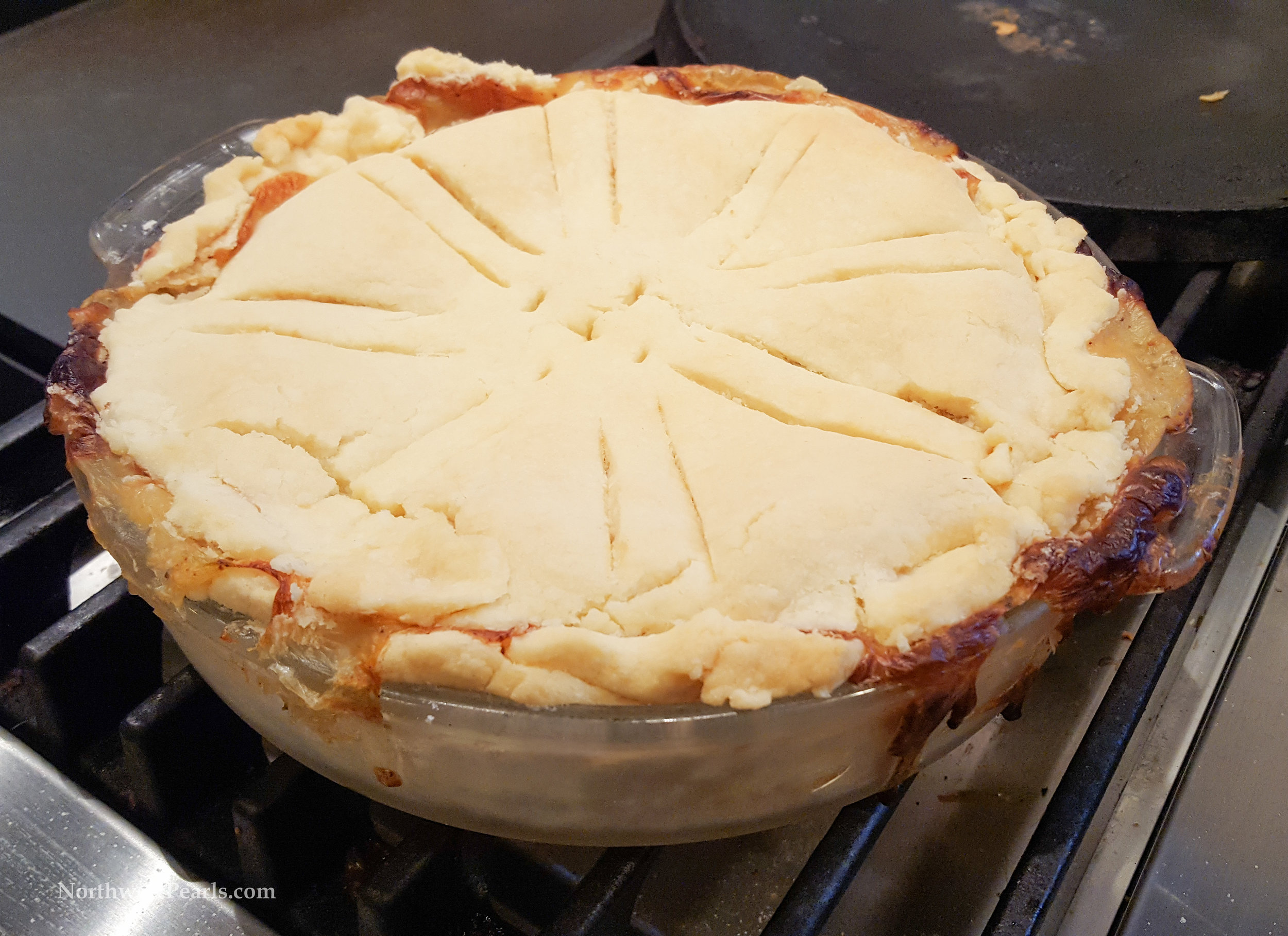 Northwest Pearls: Homemade Chicken Pot Pie