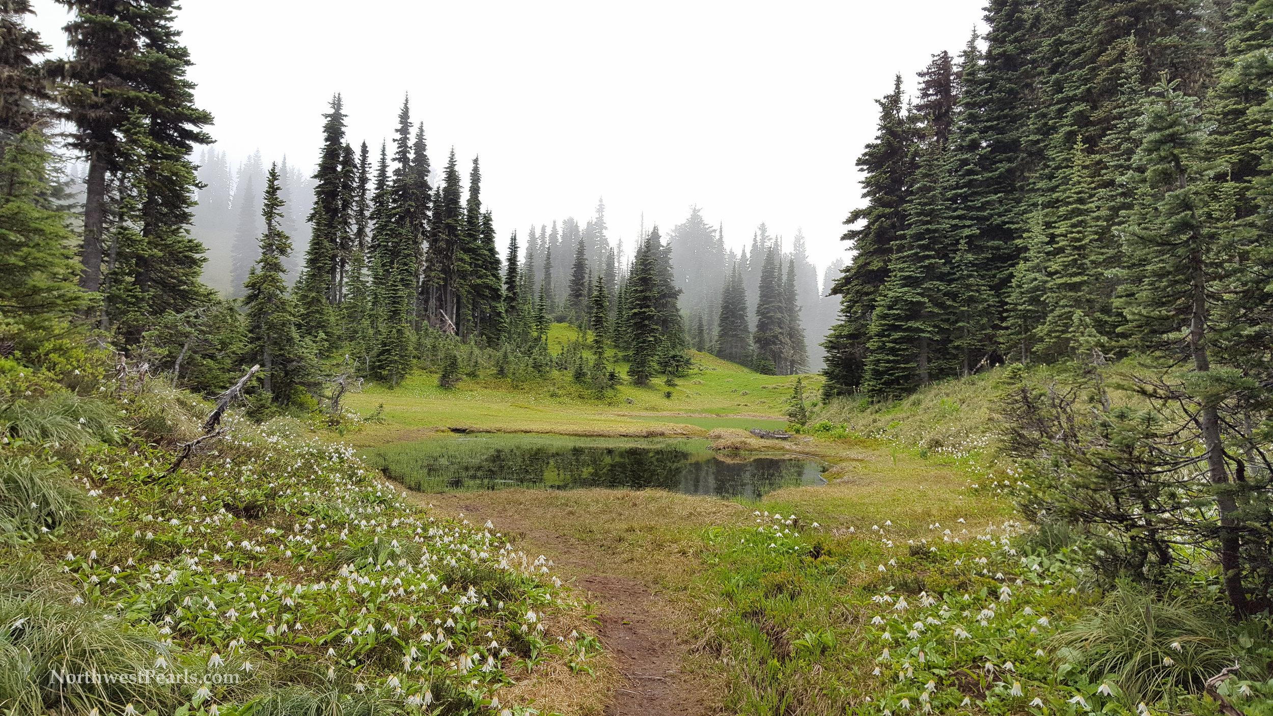 eunice-lake-tolmie-peak-xs-5