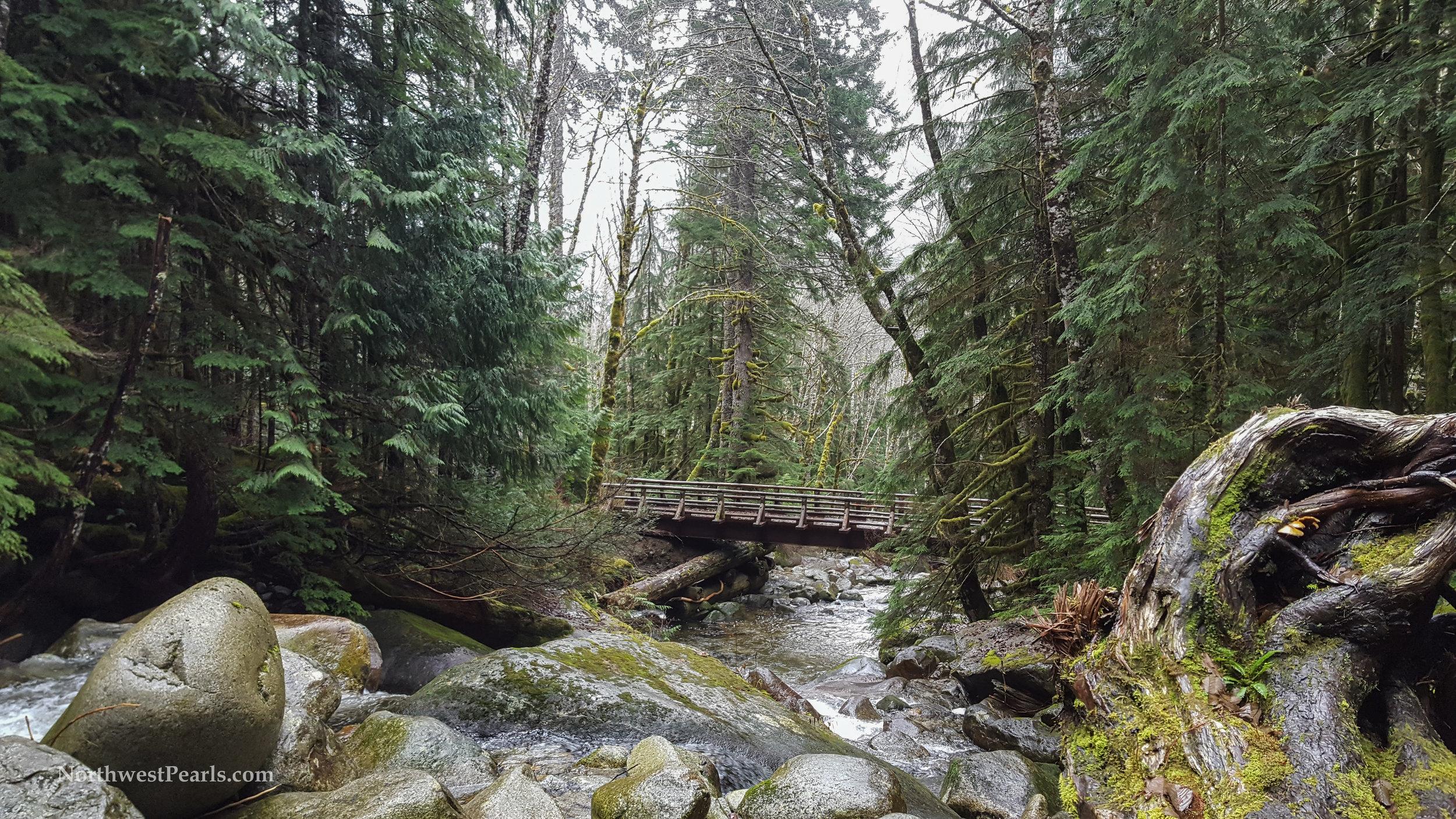 Northwest Pearls: Otter Falls