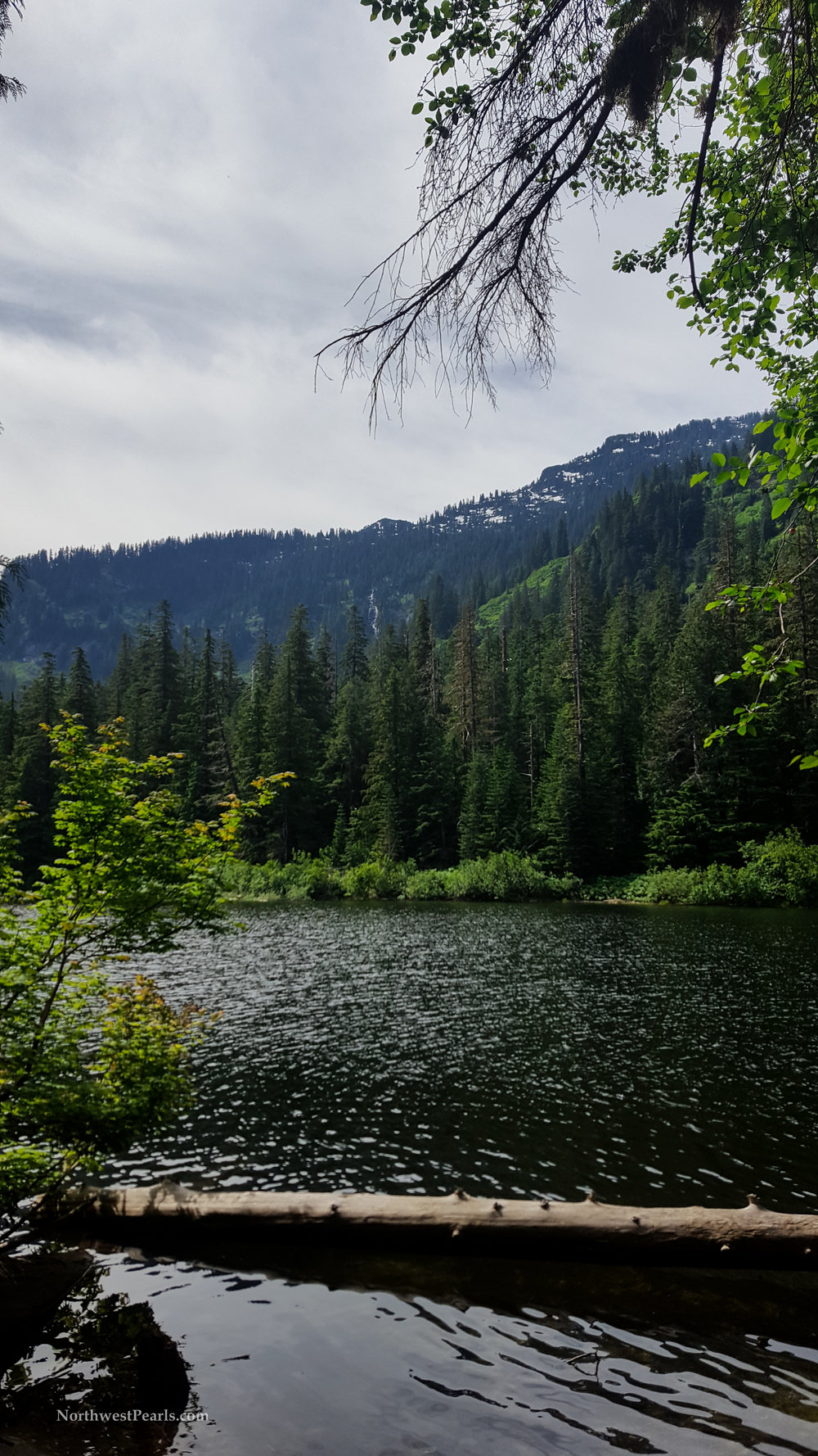 Barclay Lake-7.jpg