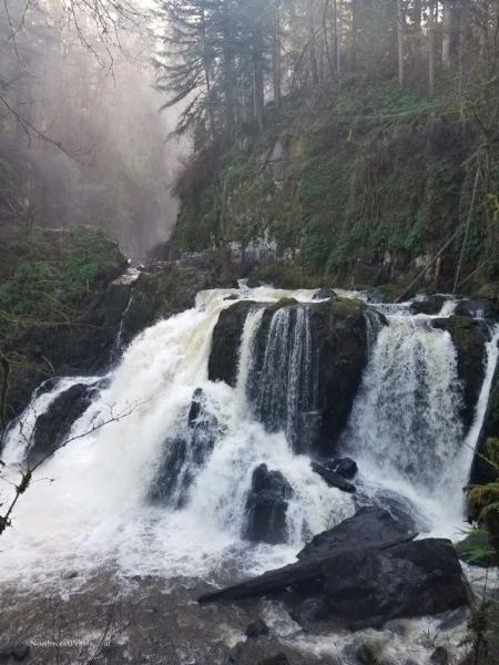 Little Mashel Falls-121357.jpg