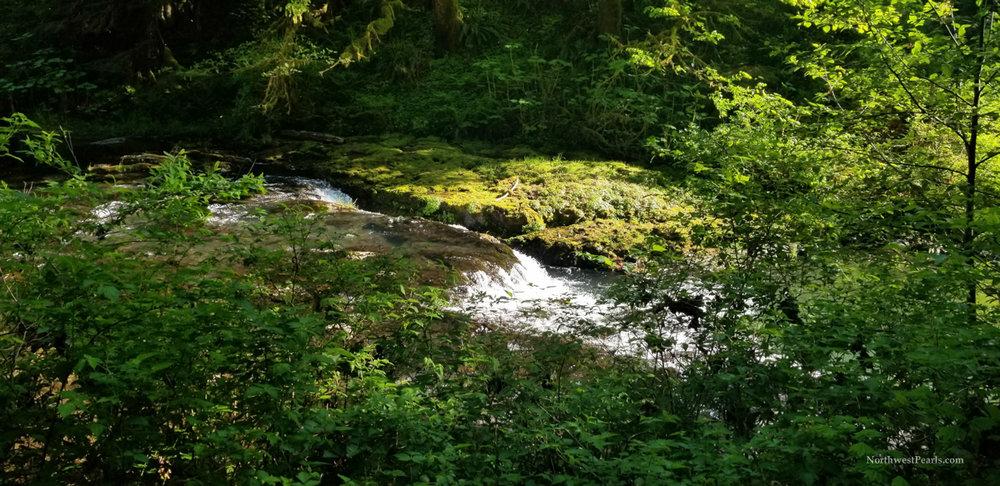 Silver Falls-3.jpg