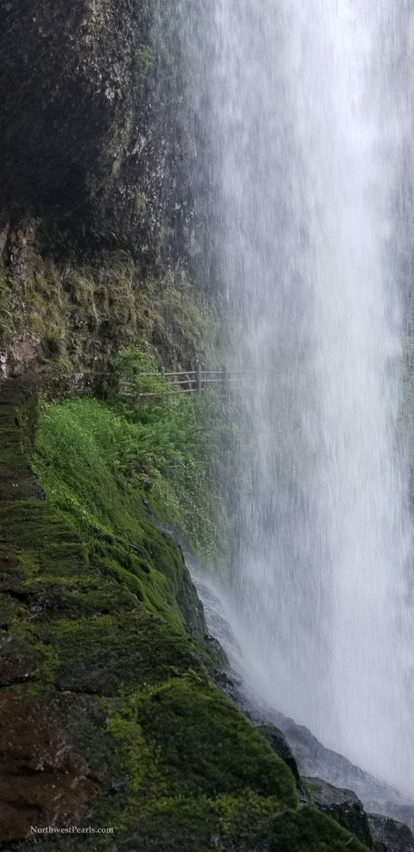 Silver Falls-9.jpg