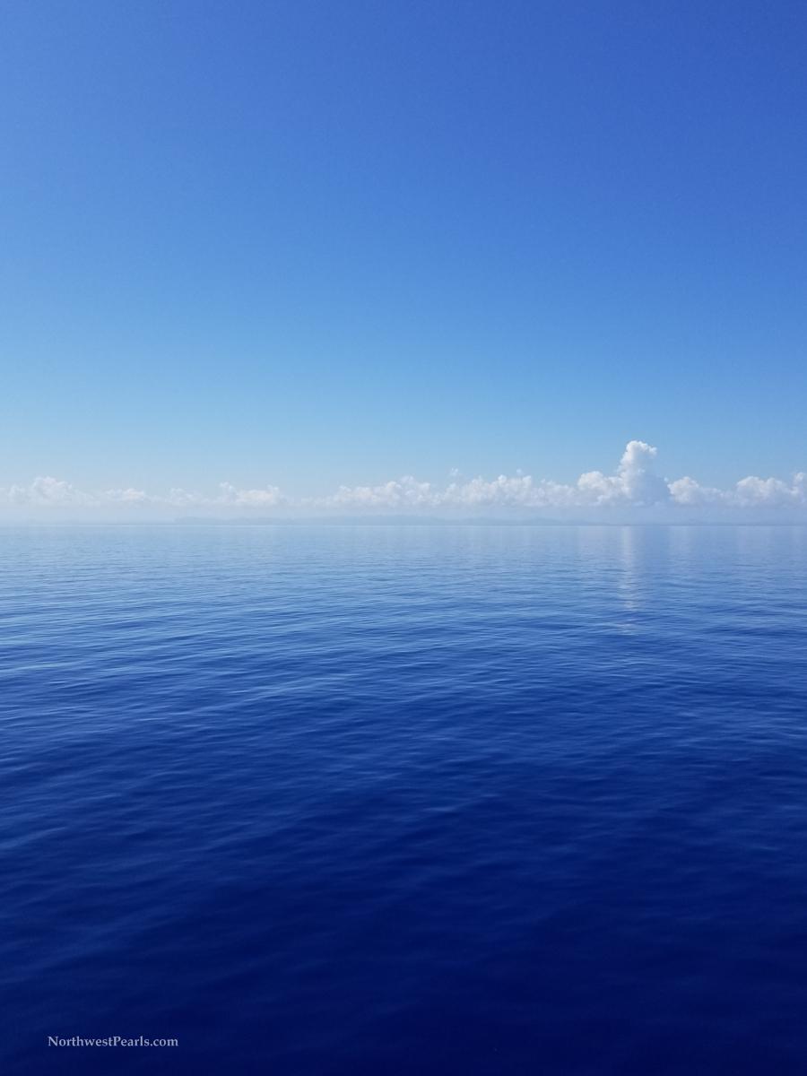 Caribbean Adventure.jpg