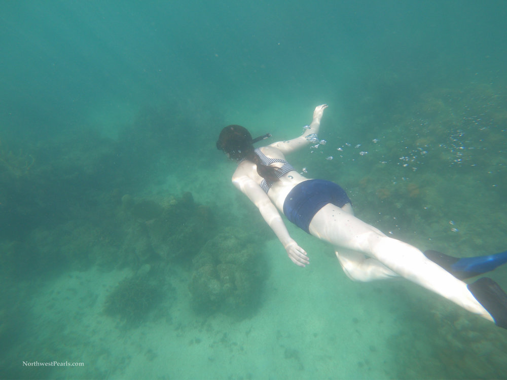 Caribbean Adventure-20.jpg