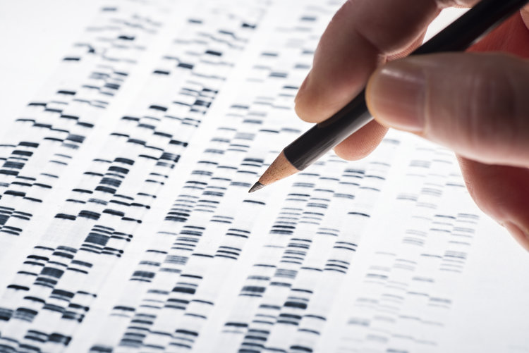 stock-photo-scientists-examined-dna-gel-that-is-used-in-genetics-medicine-biology-pharma-research-and-251435335.jpg
