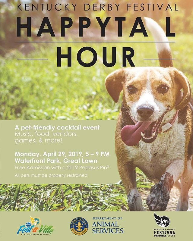 We are happy to join @louisvillemetroanimalservices next Monday for their annual Happy Tail Hour! Come enjoy a cocktail with your best pal 🐾 and support the people who help keep our animals safe and healthy 🖤 4/29 @ 5-9pm. . . . #doghillpawps #dogpopsicle #popsiclesfordogs #dogtreats #doglovers #dogsoflouisville #louisvilledogs #louisville #popsicle #dogsofinstagram #dogstagram #kyderby #kyderbyfestival #happytailhour #waterfrontpark