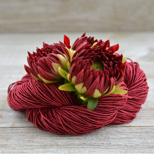 mykonos-red dahlia.jpg